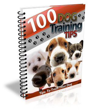 100 TIPS TO TRAIN DOG